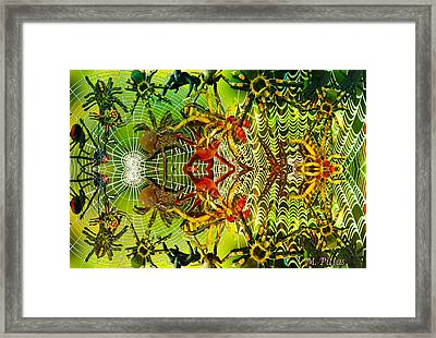Aracknid Harmony Framed Print