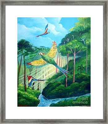 Aras On The Forest Framed Print
