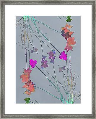 Arbor Autumn Harmony 1 Framed Print by Tim Allen