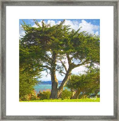 Arbor Bay Framed Print