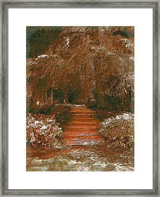 Arbor Steps Framed Print