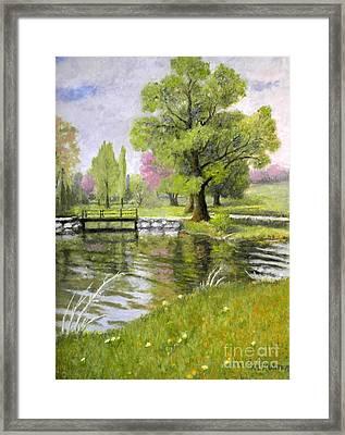 Arboretum 1 Framed Print