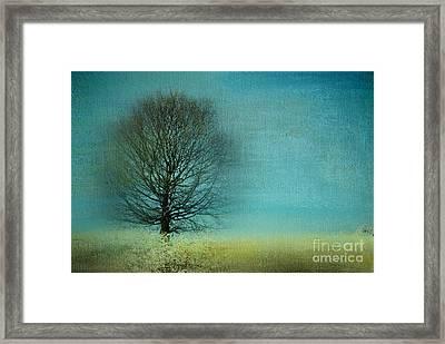 Arbrensens - V06e Framed Print