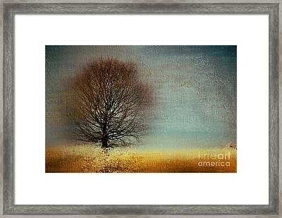 Arbrensens - V61 Framed Print