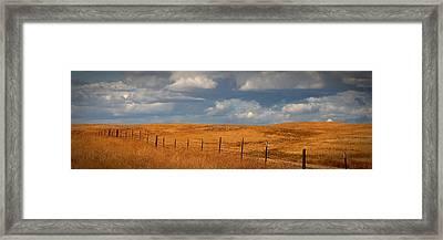 Arbuckle Fence Line Framed Print
