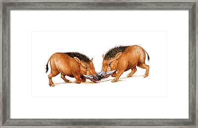 Archaeotherium Prehistoric Mammals Framed Print