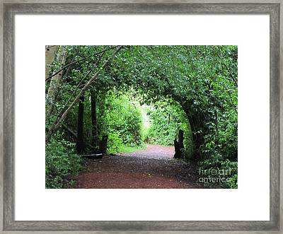 Arched Pathway Framed Print by Melissa Stinson-Borg