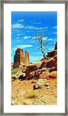 Arches Lonely Tree Framed Print