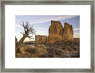 The Organ And The Tower Of Babel Framed Print