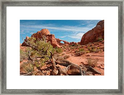 Arches National Park Framed Print by Donald Fink