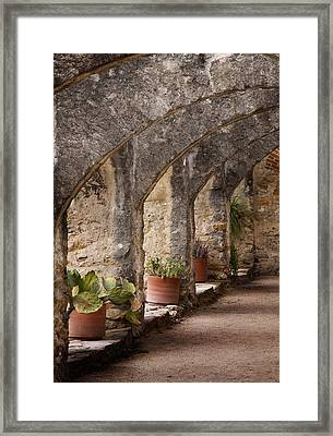 Arches Of San Jose Framed Print