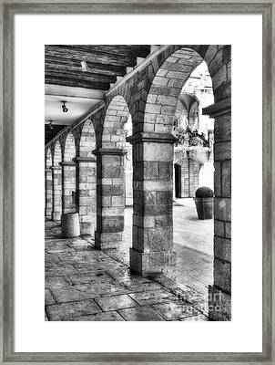 Arches Of Vienne 2 Bw Framed Print