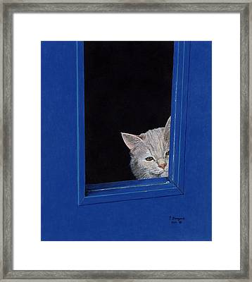 Archie Framed Print
