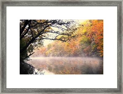 Arching Tree On The Current River Framed Print