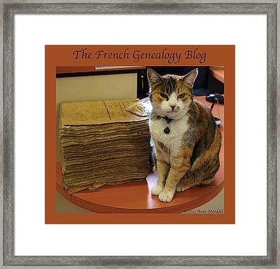 Archives Cat With Fgb Border Framed Print
