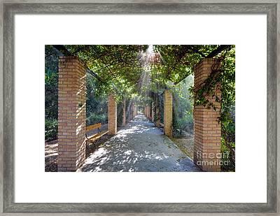 Archway Framed Print by George Atsametakis