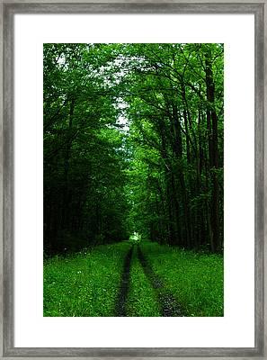 Archway Of Light Framed Print by Rhonda Barrett