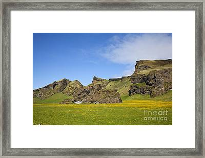 Arctic Meadow Framed Print