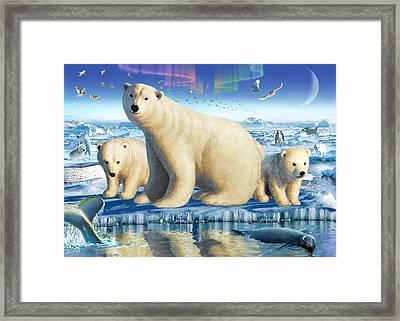Arctic Splendor Framed Print by Adrian Chesterman
