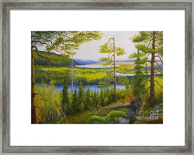 Arctic Wilderness Framed Print by Veikko Suikkanen