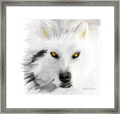 Arctic Wolf With Yellow Eyes Framed Print by Angela A Stanton