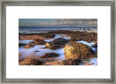 Ardrossan Morning Framed Print by Fiona Messenger