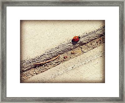 Arduous Journey Framed Print