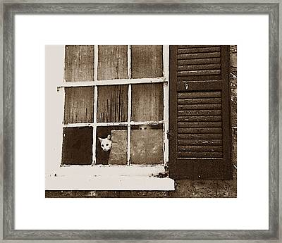 Are They Home Yet Framed Print by Wynn Davis-Shanks
