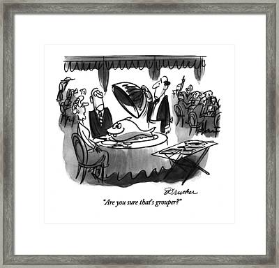 Are You Sure That's Grouper? Framed Print