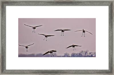 Framed Print featuring the photograph Are You Sure This Is The Spot by Don Schwartz