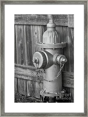 Aren't Fireplugs Red? Framed Print