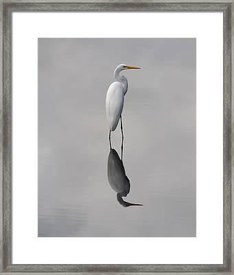 Argent Mirror Framed Print