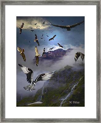 Ariel Carnavors Framed Print