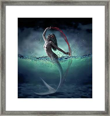 Ariel Framed Print by Dmitry Laudin