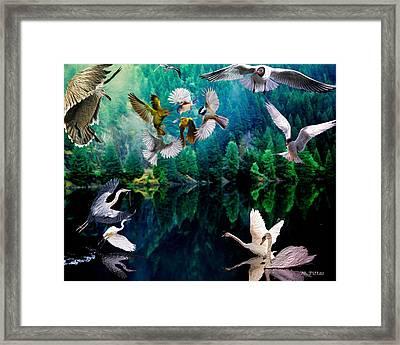 Ariel Squawkble Framed Print