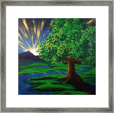 Arise Shine Framed Print by Gary Rowell