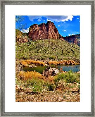 Arizona At Its' Best Framed Print by Marilyn Smith