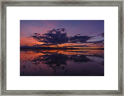 Arizona Beauty Framed Print by Beverly Parks