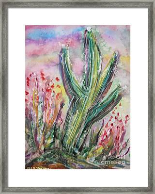 Arizona Desert Framed Print by M C Sturman
