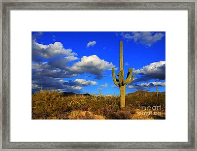 Arizona Landscape 2 Framed Print by Bob Christopher
