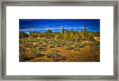 Arizona Landscape Iv Framed Print by David Patterson