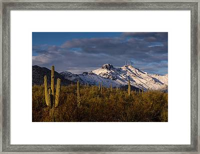 Arizona Mountains In Snow Framed Print by Rob Travis