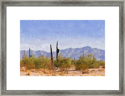 Arizona Sonoran Desert Framed Print