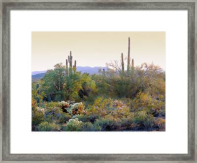 Arizona Spirit Framed Print