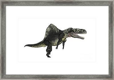 Arizonasaurus Dinosaur Framed Print by Elena Duvernay