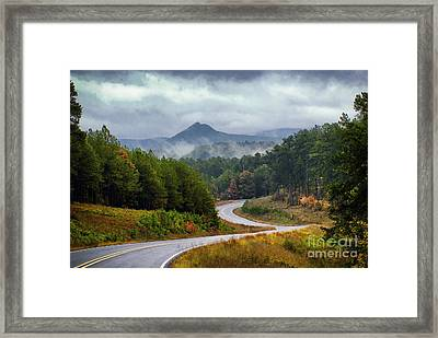 Arkansas Logging Road  Framed Print
