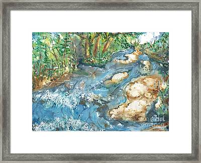 Arkansas Stream Framed Print