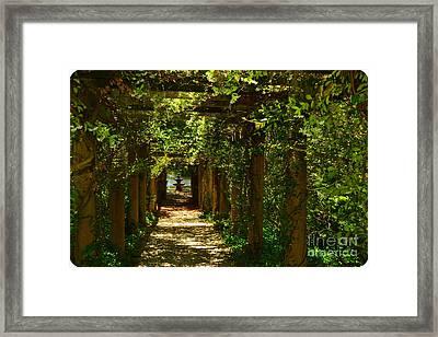Arlie Italian Pergola Garden Framed Print