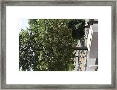 Arlington National Cemetery - 121228 Framed Print by DC Photographer