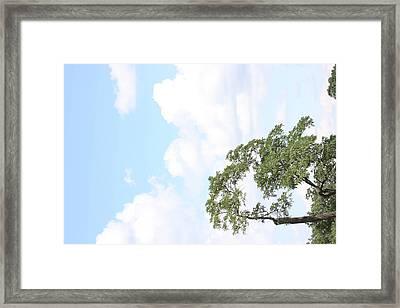 Arlington National Cemetery - 121235 Framed Print by DC Photographer